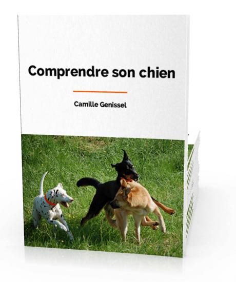 Comprendre son chien, par Camille Genissel